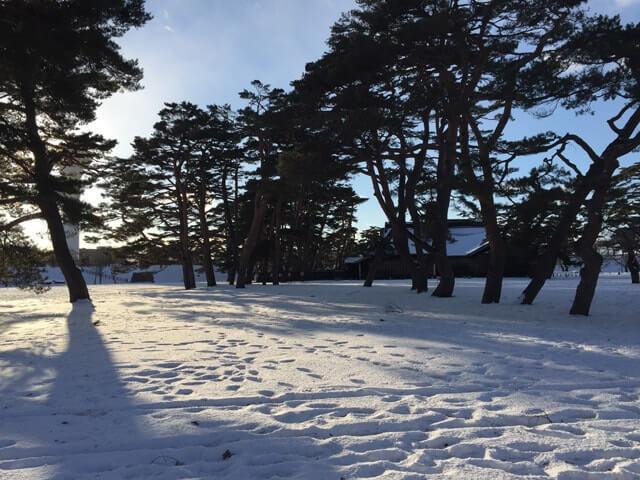雪の五稜郭公園